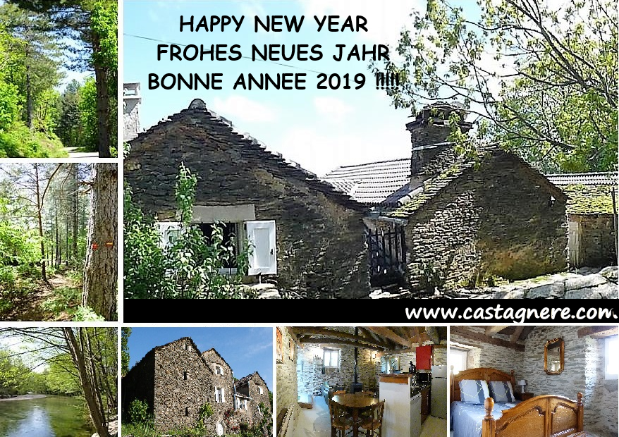 HAPPY NEW YEAR - FROHES NEUES JAHR - BONNE ANNEE 2019 !!!!!