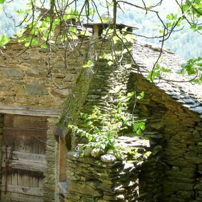 Clède (séchoir à chataignes) du mas Castagnère en Cévennes