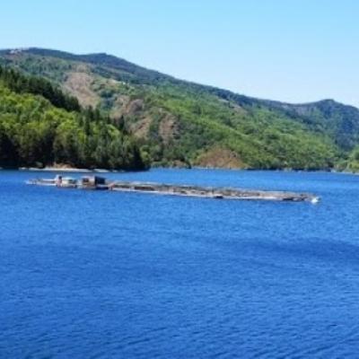 Elevage de truite lac de Villefort @ Gite Castagnere