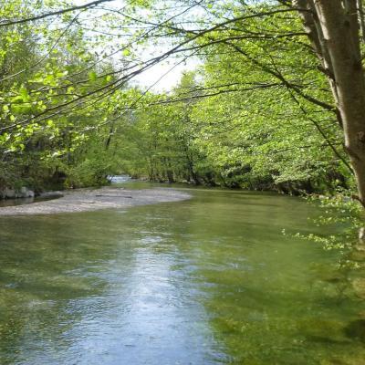 Gite Castagnère 4* en Cévennes riviere Cèze