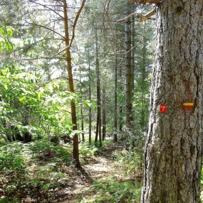 Mas Castagnère en Cévennes chemin de randonnée GRP4