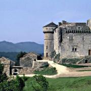 Chateau d'Aujac, à 5km du gite Castagnère 4* en Cévennes