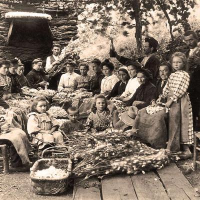 Apogee de la soie francaise