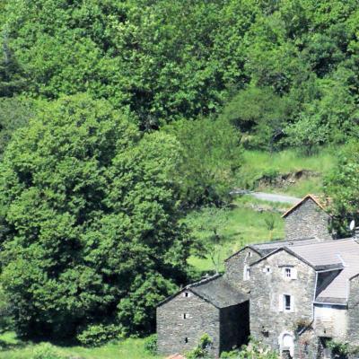 Environnement du mas Castagnère en Cévennes