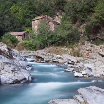 Rivière la Cèze - Moulin du Roure