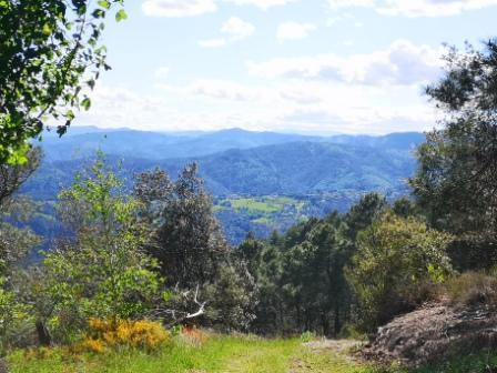 Panoramamalbosc