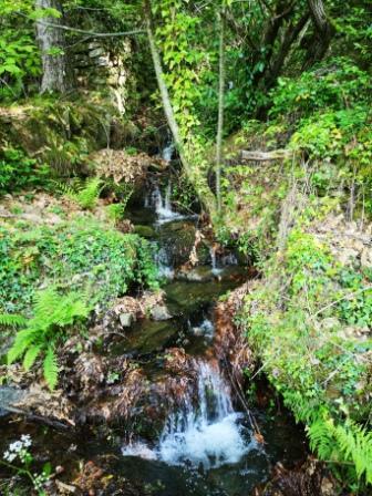 Ruisseaumalbosc