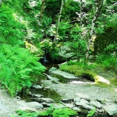 Tour du lac de villefort gite castagnere